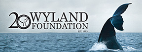 Wyland Foundation banner